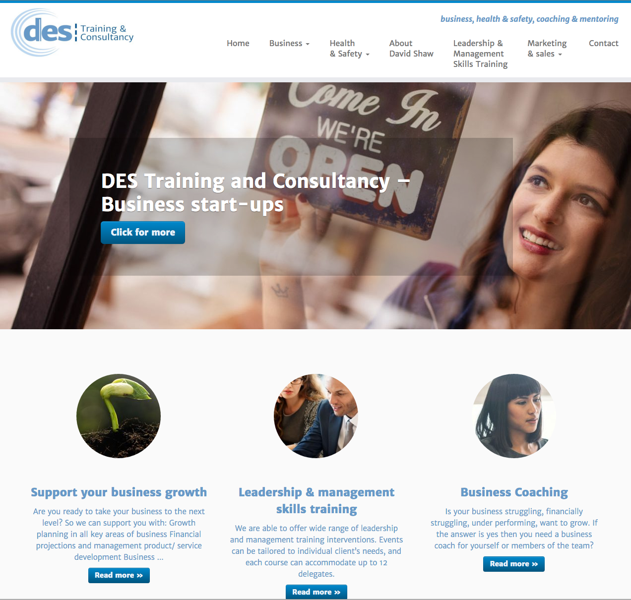 DES Training and Consultancy website design